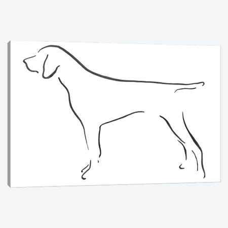 German Shorthaired Pointer Side Canvas Print #LSB23} by Lesley Bishop Canvas Print
