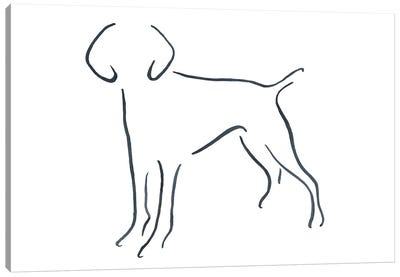 German Short Haired Pointer Facing Forward Canvas Art Print