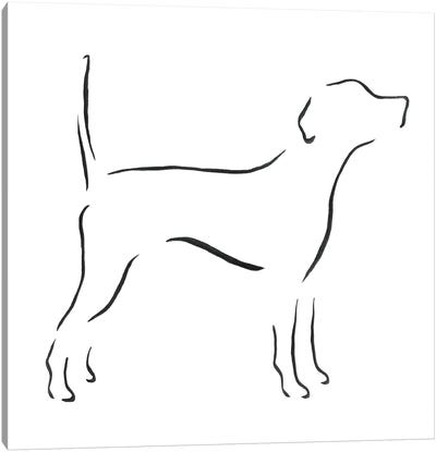 English Pointer With Tail Up Canvas Art Print