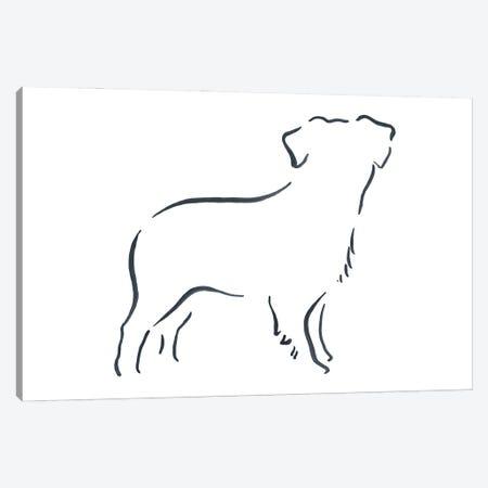 Miniature Australian Shepherd Canvas Print #LSB41} by Lesley Bishop Canvas Print