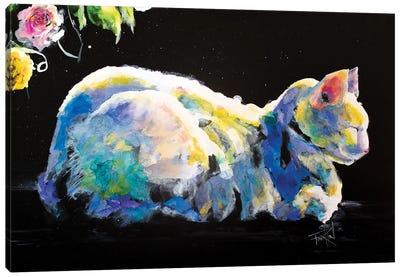 Catio Canvas Art Print