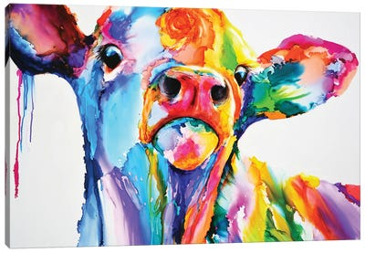 Do These Colours Make My Calves Look Fat Canvas Art Print