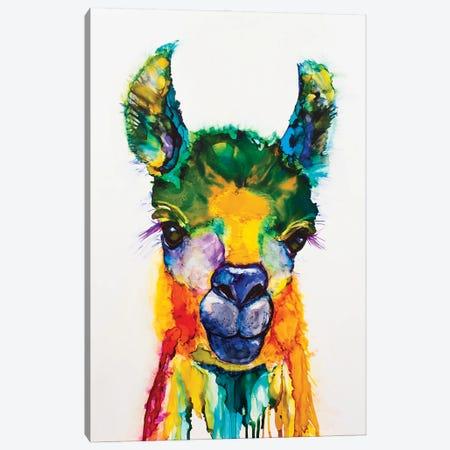 Llama-rama Canvas Print #LSF38} by Art by Leslie Franklin Canvas Artwork