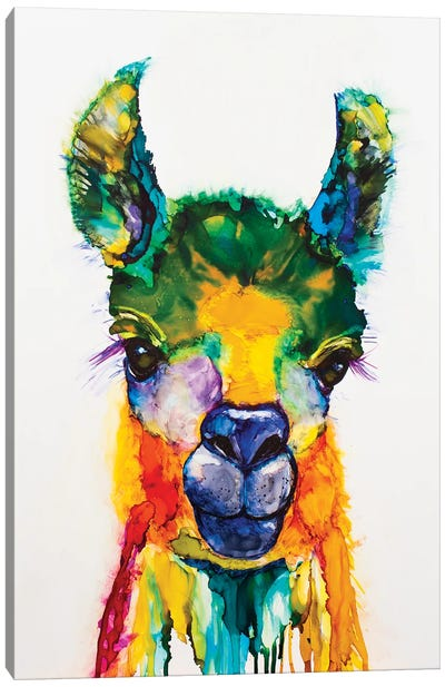 Llama-rama Canvas Art Print