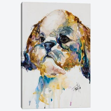 Shih Tzu Canvas Print #LSF57} by Art by Leslie Franklin Canvas Print