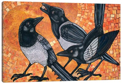 Three Magpies Canvas Art Print