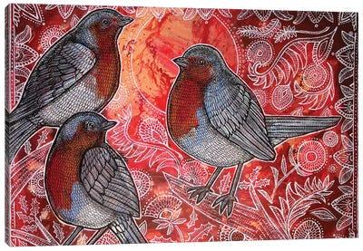 Three Robins Canvas Art Print