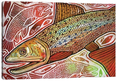 Trout Run Canvas Art Print
