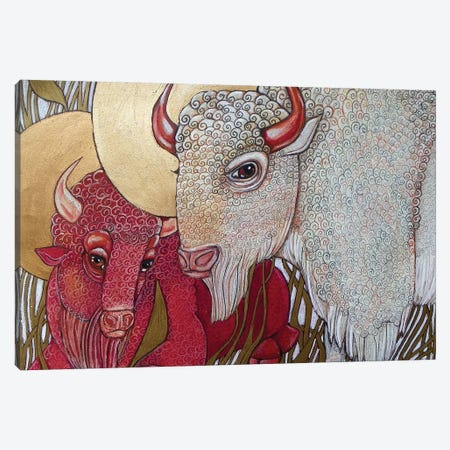 White Buffalo Canvas Print #LSH126} by Lynnette Shelley Art Print