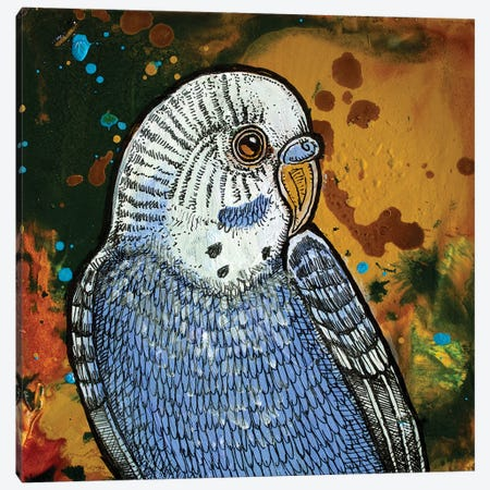 Blue Parakeet Canvas Print #LSH14} by Lynnette Shelley Art Print