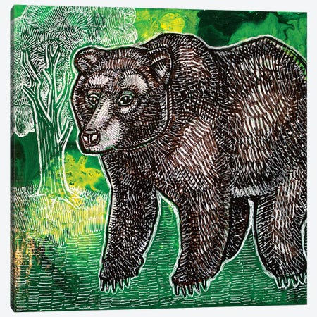 Brown Bear Canvas Print #LSH150} by Lynnette Shelley Canvas Print