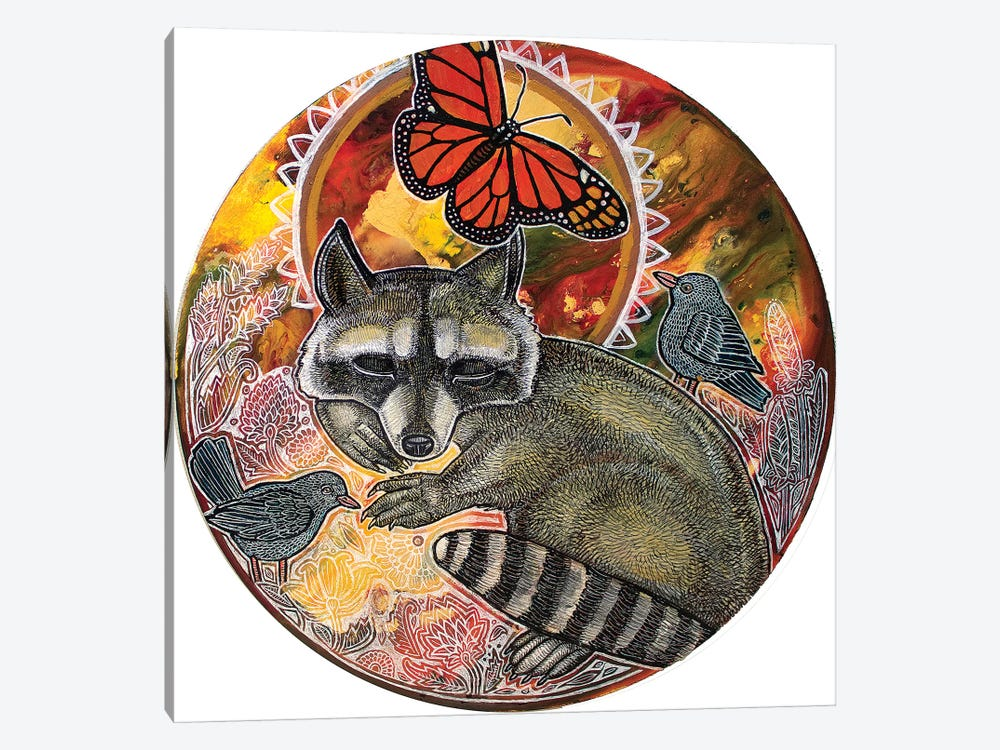 Dreaming Raccoon by Lynnette Shelley 1-piece Art Print