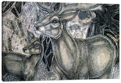 Enchanted Woodlands Canvas Art Print