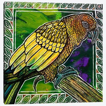Sun Conure Canvas Print #LSH164} by Lynnette Shelley Canvas Art Print
