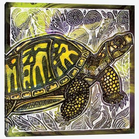 Box Turtle And Dandelions Canvas Print #LSH167} by Lynnette Shelley Canvas Art Print