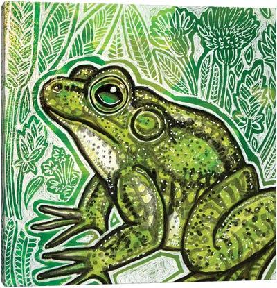 Little Frog Canvas Art Print