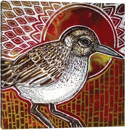 Sandpiper Canvas Art Print
