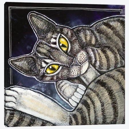 Cat Curl Canvas Print #LSH194} by Lynnette Shelley Canvas Art