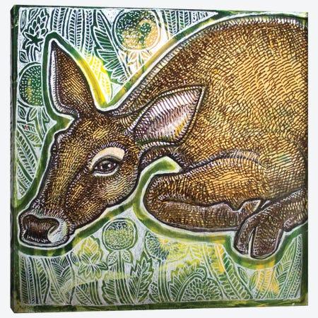 Resting Deer Canvas Print #LSH224} by Lynnette Shelley Canvas Art