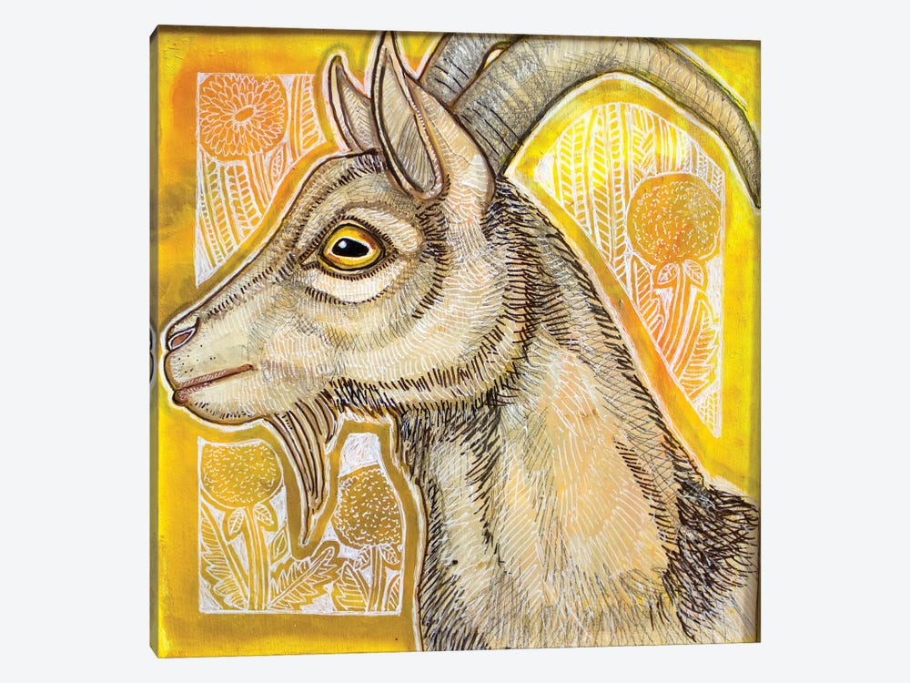 Goat With Dandelions by Lynnette Shelley 1-piece Canvas Art