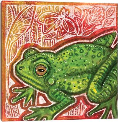 Little Green Frog Canvas Art Print