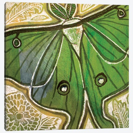 Little Luna Moth Canvas Print #LSH251} by Lynnette Shelley Canvas Wall Art