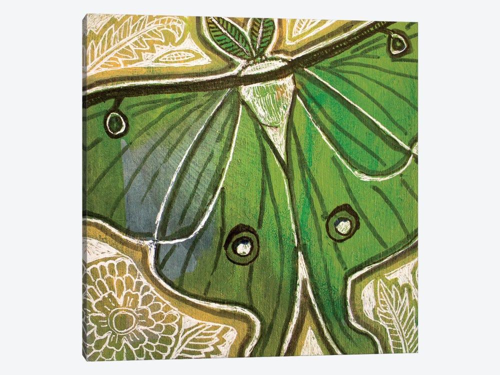Little Luna Moth by Lynnette Shelley 1-piece Canvas Art