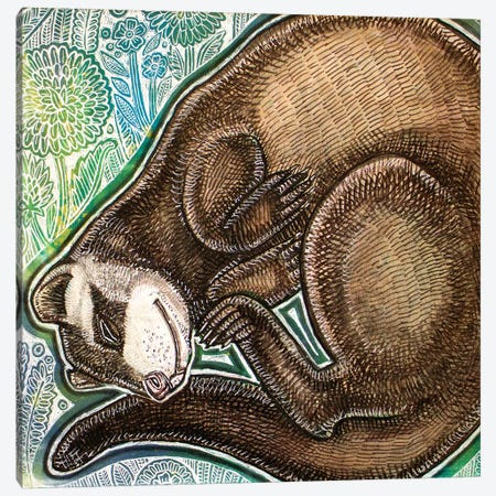 Dreaming Ferret Canvas Print #LSH257} by Lynnette Shelley Art Print