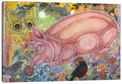 Dreaming Pig Canvas Art Print