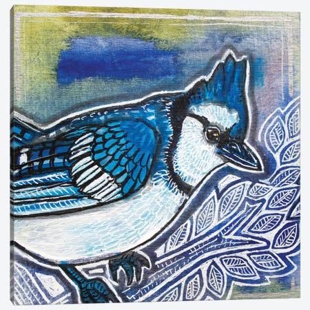 Blue Jay Canvas Print #LSH270} by Lynnette Shelley Canvas Wall Art