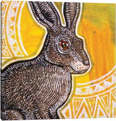 Sun Rabbit Canvas Art Print