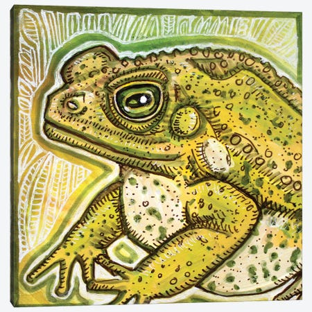 Fat Toad Canvas Print #LSH298} by Lynnette Shelley Canvas Artwork
