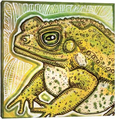 Fat Toad Canvas Art Print