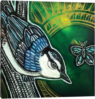 White-Breasted Nuthatch Canvas Art Print