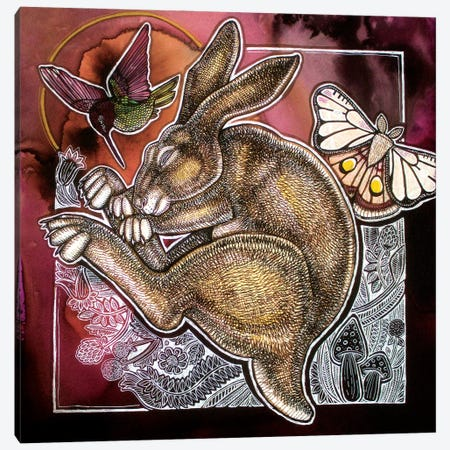 The Dreaming Hare Canvas Print #LSH324} by Lynnette Shelley Art Print
