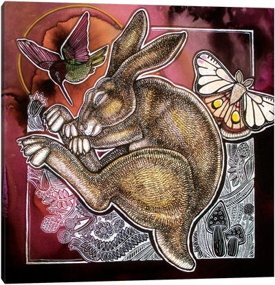 The Dreaming Hare Canvas Art Print