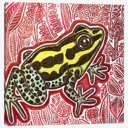 Poison Dart Frog Canvas Print #LSH358} by Lynnette Shelley Canvas Art Print