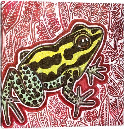Poison Dart Frog Canvas Art Print