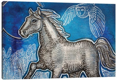 Blue Skies For A Silver Horse Canvas Art Print
