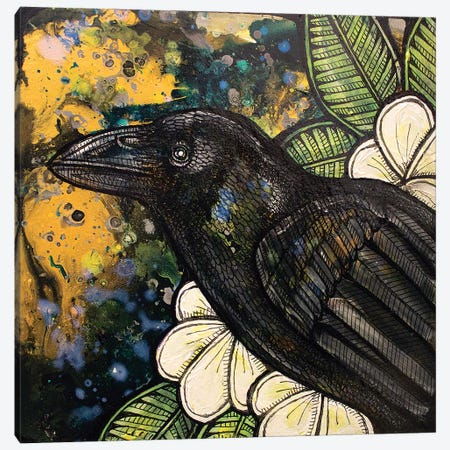 Alala Canvas Print #LSH3} by Lynnette Shelley Canvas Wall Art