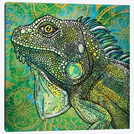 Iguana On Green And Gold Canvas Print #LSH49} by Lynnette Shelley Canvas Art Print