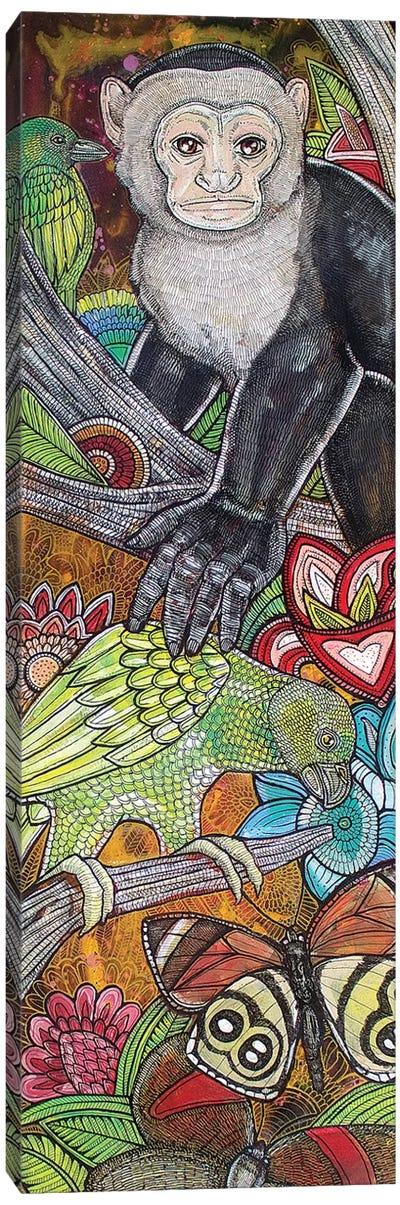 Amazonia Canvas Art Print