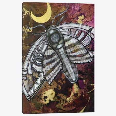 Nightflight Canvas Print #LSH67} by Lynnette Shelley Canvas Art