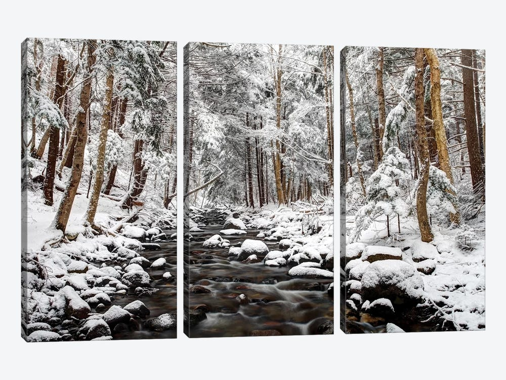 Stream In Winter, Nova Scotia, Canada - Horizontal by Scott Leslie 3-piece Canvas Wall Art