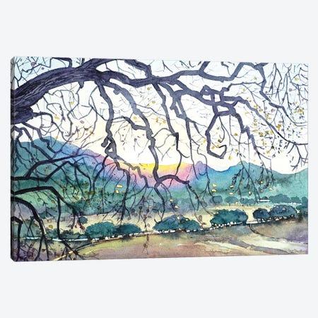 Winter - Malibu Creek Canvas Print #LSM102} by Luisa Millicent Canvas Wall Art