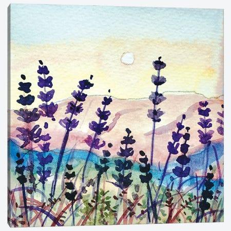 Seedheads On Topanga Skyline Canvas Print #LSM105} by Luisa Millicent Canvas Art Print