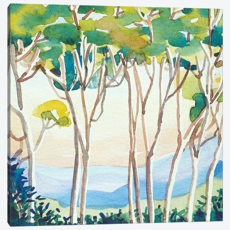 Eucalyptus Sunset Canvas Print #LSM108} by Luisa Millicent Canvas Artwork