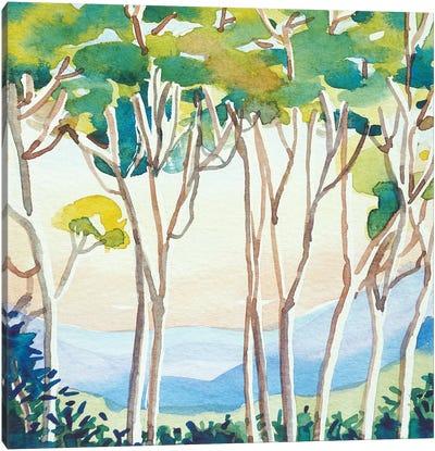 Eucalyptus Sunset Canvas Art Print