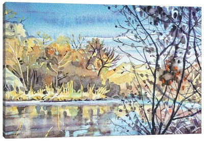 Century Lake - November Morning Canvas Art Print
