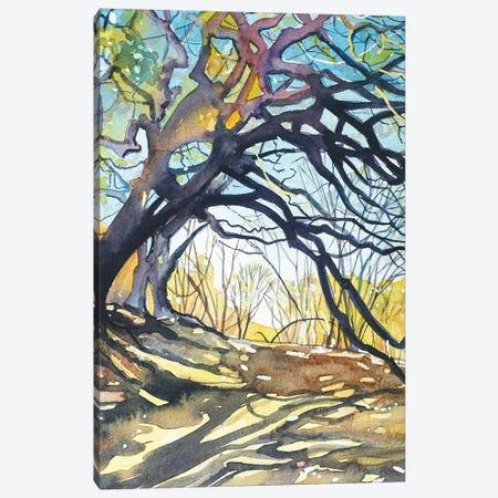 Oaks - Paramount Ranch Canvas Print #LSM123} by Luisa Millicent Canvas Art